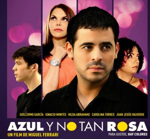 AZUL Y NO TAN ROSA_2